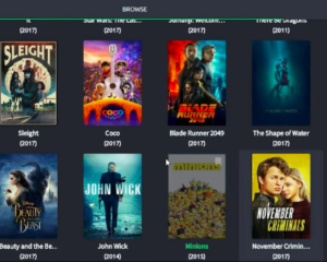 Coto Movies App Features on PC
